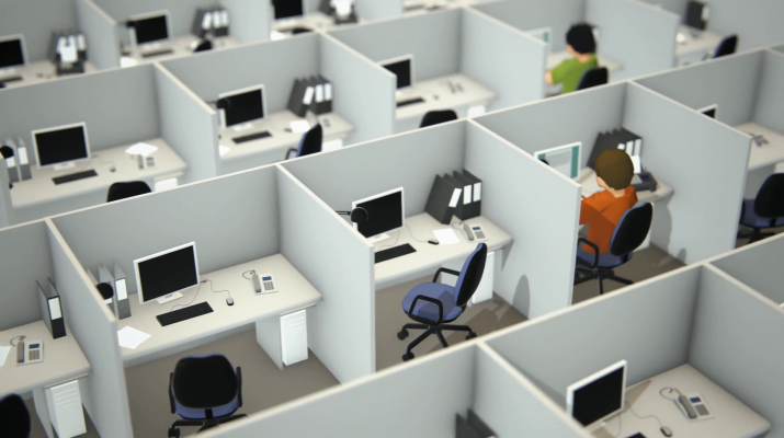 employees-working-in-cubicles-in-office_swpjiozl__F0000