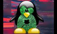آیا ۲۰۲۰ سال شیوع بدافزار برای لینوکس بود؟